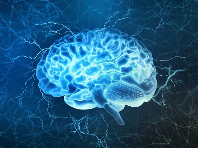 Simple Habits To Make Your Brain Younger